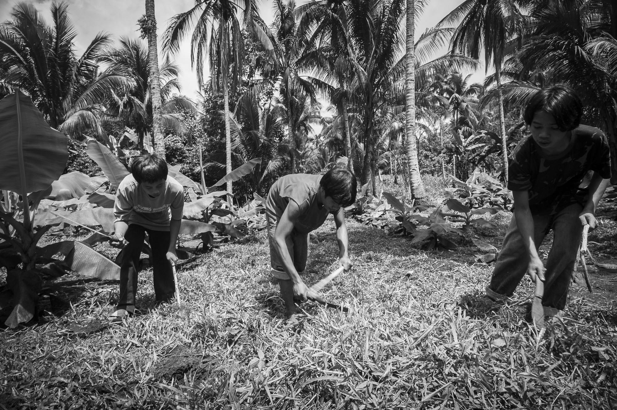 Fotograaf Jurgen Doom - reportage Filipijnen Davao Sibulan Ecologische bananen